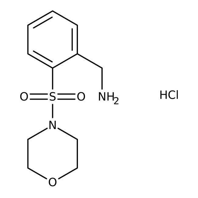 2-(Morpholinosulfonyl)benzylamine hydrochloride, 97%, Maybridge™ Amber Glass Bottle; 1g 2-(Morpholinosulfonyl)benzylamine hydrochloride, 97%, Maybridge™