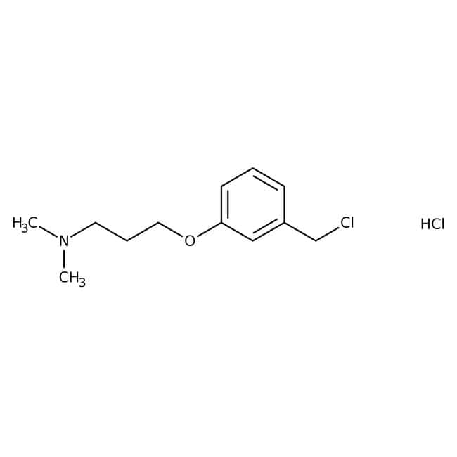 Chlorhydrate de 3-[3-(chlorométhyl)phénoxy]-N,N-diméthylpropylamine, 95 %, Maybridge Flacon en verre ambré ; 1 g Chlorhydrate de 3-[3-(chlorométhyl)phénoxy]-N,N-diméthylpropylamine, 95 %, Maybridge
