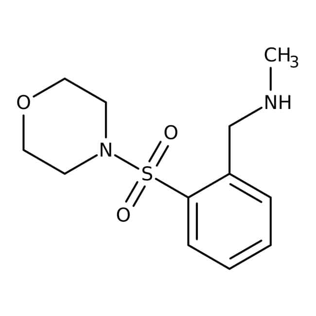 N-Methyl-2-(morpholinosulfonyl)benzylamine, 97%, Maybridge™: Benzene and substituted derivatives Benzenoids