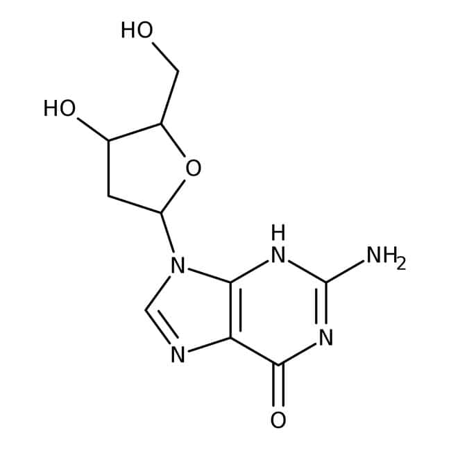 2'-Deoxyguanosine hydrate, 99+%, ACROS Organics™ 100mg; Glass bottle 2'-Deoxyguanosine hydrate, 99+%, ACROS Organics™