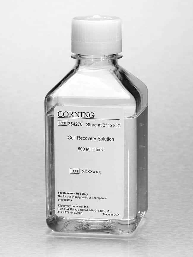 Corning Cell Recovery Solution Cell Recovery Solution; 500 mL:Life Sciences