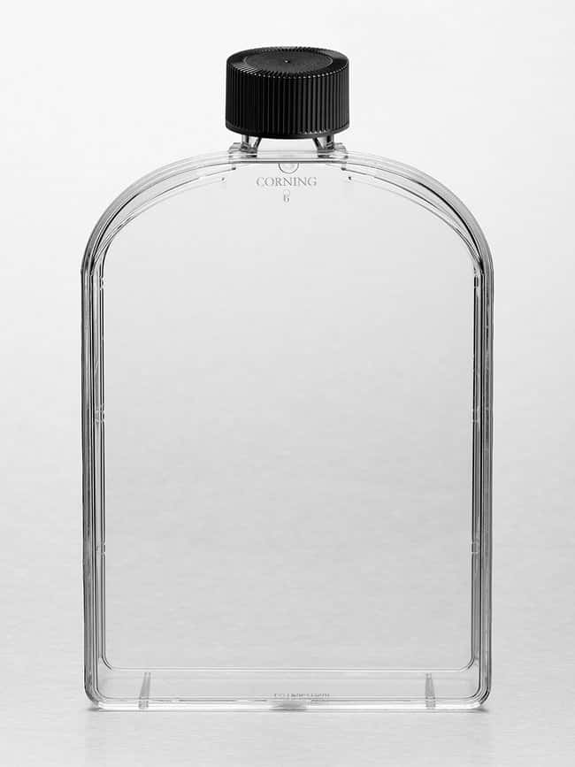 Corning Cell Culture Treated Flasks  Angled Necks; Culture area: 175cm<sup>2</sup>;