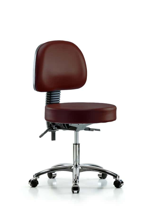 FisherbrandVinyl Stool with Back Chrome - Desk Height with Casters in Grade