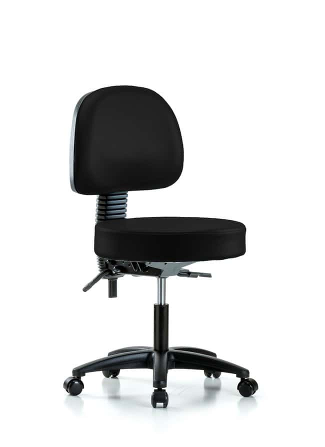 FisherbrandVinyl Stool with Back - Desk Height with Casters in Grade B