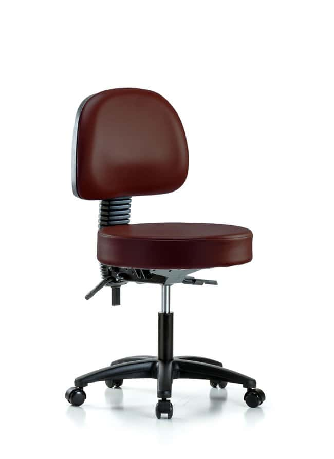 Fisherbrand Vinyl Stool with Back - Desk Height with Seat Tilt and Casters