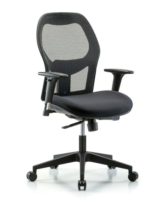 Fisherbrand Executive Windrowe Mesh Back Chair with Standard Adjustable