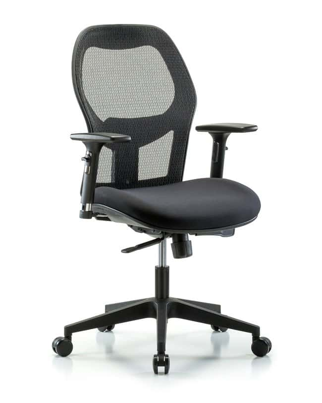 Fisherbrand Executive Windrowe Mesh Back Chair with 3D Adjustable Arms