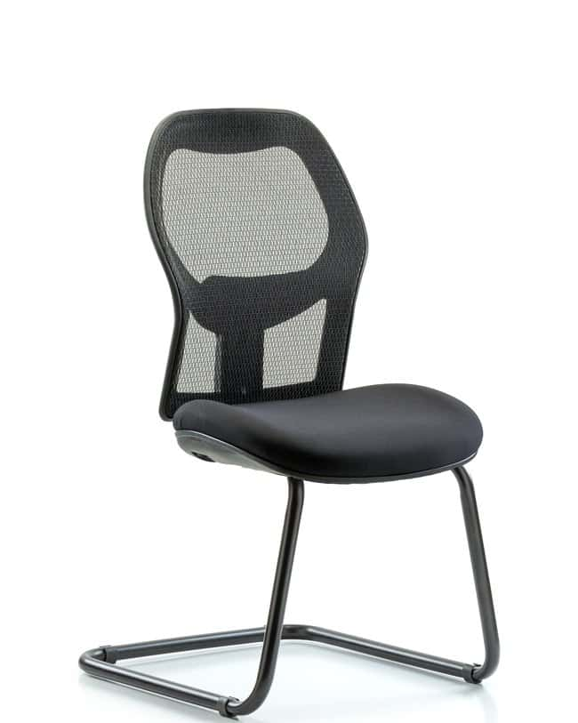 FisherbrandExecutive Windrowe Mesh Back Guest Chair:Furniture:Seating