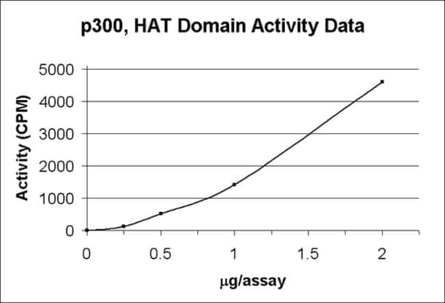 MilliporeSigma Upstate p300, HAT Domain Recombinant Enzyme  p300, HAT Domain;