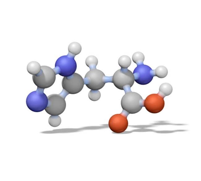 MilliporeSigma Calbiochem NADPH, Tetrasodium Salt 1g:Life Sciences