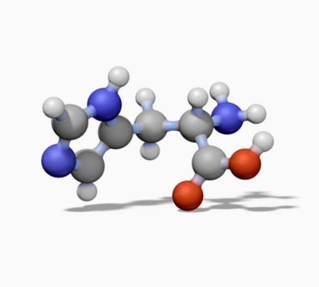 MilliporeSigma Calbiochem -Glucan, Saccharomyces cerevisiae β-Glucan,