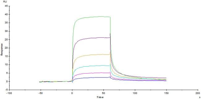 ACROBiosystemsHuman B7-H5 / Gi24 / VISTA Protein, Mouse IgG2a Fc Tag, low endotoxin 100 ug ACROBiosystemsHuman B7-H5 / Gi24 / VISTA Protein, Mouse IgG2a Fc Tag, low endotoxin
