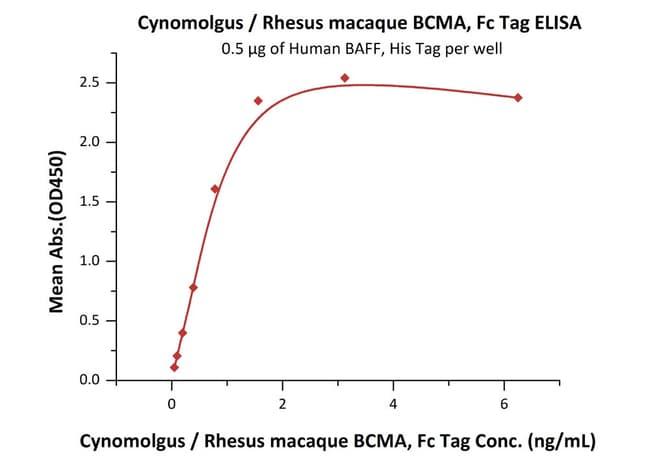 ACROBiosystemsCynomolgus / Rhesus macaque BCMA / TNFRSF17 Protein, Fc Tag 100 ug ACROBiosystemsCynomolgus / Rhesus macaque BCMA / TNFRSF17 Protein, Fc Tag