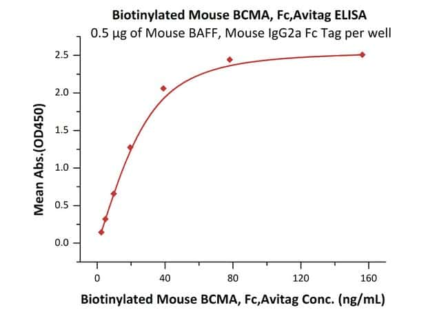 ACROBiosystems 25UG Biotinylated Mouse BCMA / TNFRSF17 Protein, Fc Tag, Avi Tag (Avitag)  Produkte