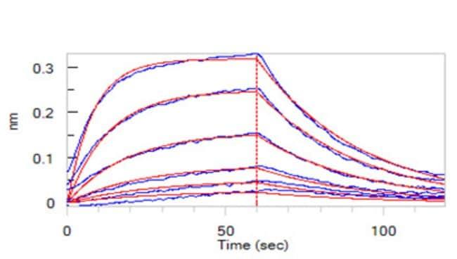 ACROBiosystems100UG Human Siglec-2 / CD22 Protein  Produkte
