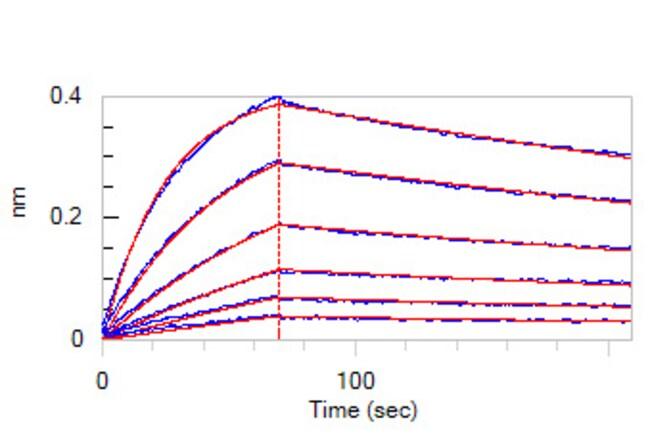 ACROBiosystems100ug Cynomolgus Her2 / ErbB2 Protein  Produkte