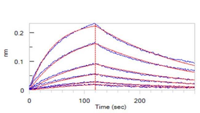 ACROBiosystems100ug Human LRRC32 / GARP / Garpin Protein, Fc Tag(BLI verified)  Produkte