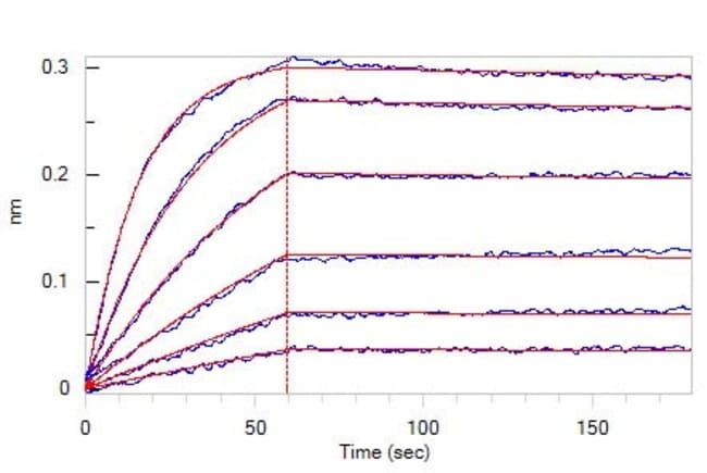 ACROBiosystemsHuman ROR1 Protein, Fc Tag 1 mg ACROBiosystemsHuman ROR1 Protein, Fc Tag