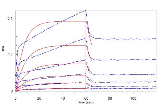 ACROBiosystemsHuman SIRP alpha / CD172a Protein, His Tag 1 mg ACROBiosystemsHuman SIRP alpha / CD172a Protein, His Tag