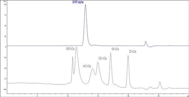 ACROBiosystemsHuman SIRP alpha / CD172a Protein, Fc Tag 100 ug ACROBiosystemsHuman SIRP alpha / CD172a Protein, Fc Tag