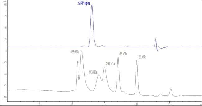 ACROBiosystems 100UG Human SIRP alpha / CD172a Protein, mouse IgG1 Fc Tag (HPLC-verified)  Produkte