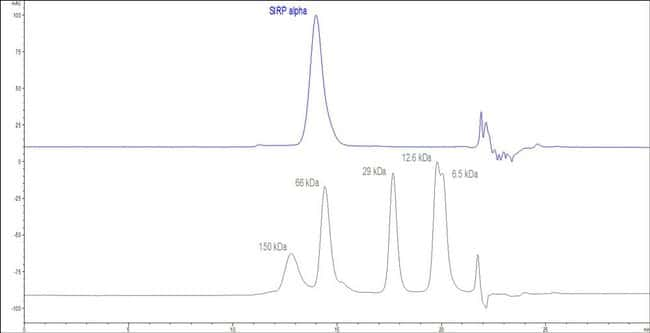 ACROBiosystems 25ug Biotinylated Human SIRP alpha / CD172a Protein, His,Avitag (HPLC verified)  Produkte