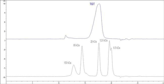 ACROBiosystemsCynomolgus / Rhesus macaque TIGIT Protein, His Tag 50 ug ACROBiosystemsCynomolgus / Rhesus macaque TIGIT Protein, His Tag