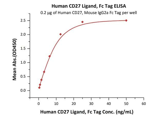 ACROBiosystems Human CD27 Ligand / CD70 Protein, Fc Tag 1 mg ACROBiosystems Human CD27 Ligand / CD70 Protein, Fc Tag