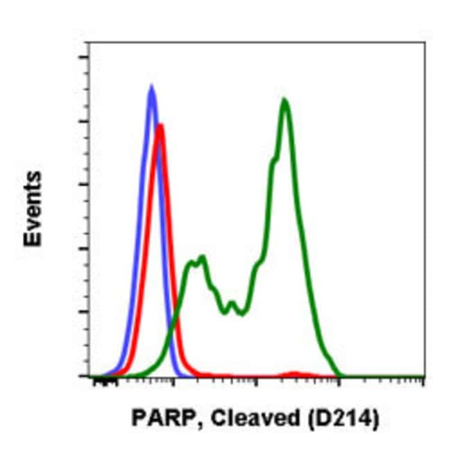 PARP1, Rabbit anti-Human, Clone: H8, Abnova 200µL; Unconjugated