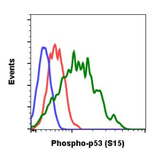 TP53, Rabbit anti-Human, Clone: 1C11, Abnova 20µL; Unconjugated