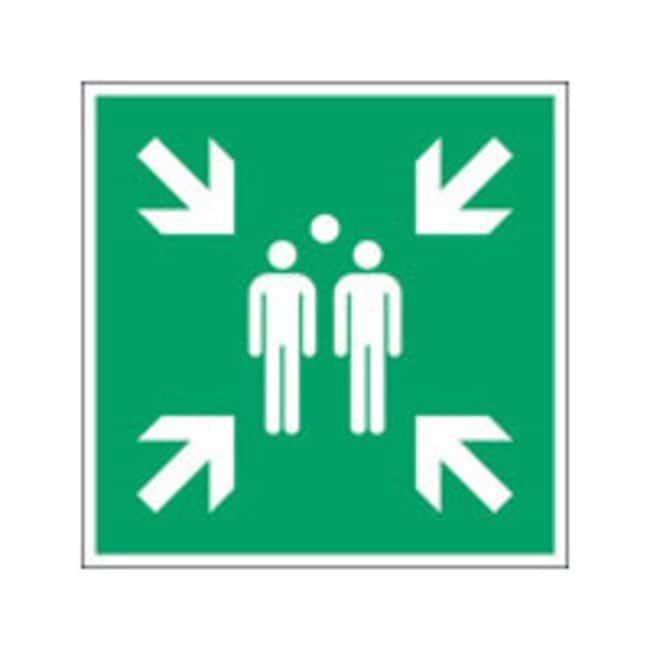 Brady™Laminierter Polyester: ISO-Sicherheitsschild– Evakuierungssammelpunkt Bx H: 400 x 400mm Brady™Laminierter Polyester: ISO-Sicherheitsschild– Evakuierungssammelpunkt