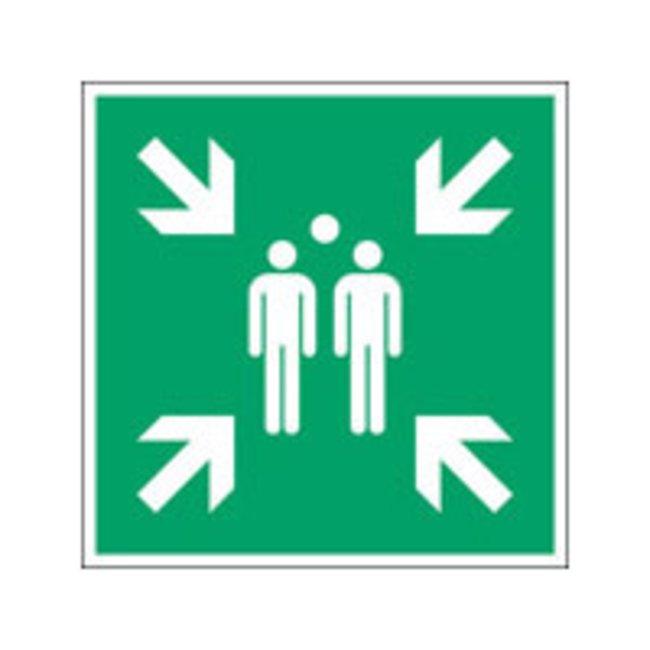 Brady™Polypropylene: ISO Safety Sign - Evacuation assembly point W x H: 100 x 100 mm Brady™Polypropylene: ISO Safety Sign - Evacuation assembly point