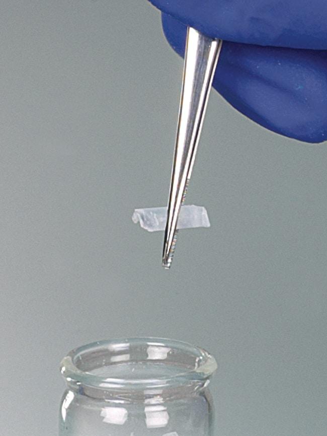 Buerkle™Pinzette Edelstahl spitz, gerade Form Length: 130 mm Buerkle™Pinzette Edelstahl spitz, gerade Form