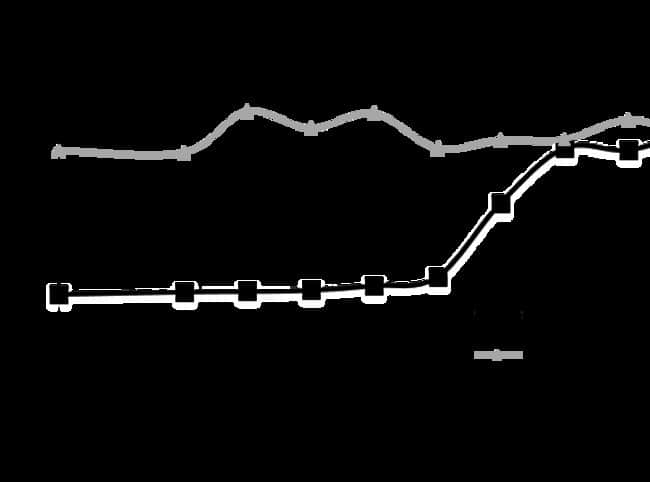 enQuireBio™Recombinant Human GDF-8 / Myostatin / MSTN Protein 25μg enQuireBio™Recombinant Human GDF-8 / Myostatin / MSTN Protein