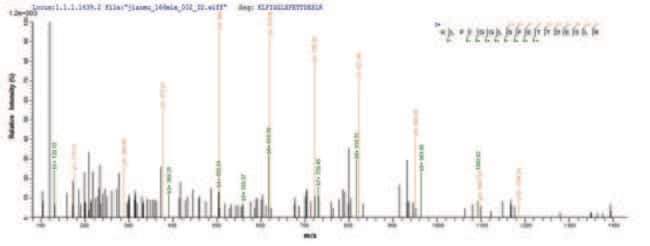 enQuireBio™Recombinant Human Heterogeneous nuclear ribonucleoprotein A1 Protein 500μg enQuireBio™Recombinant Human Heterogeneous nuclear ribonucleoprotein A1 Protein