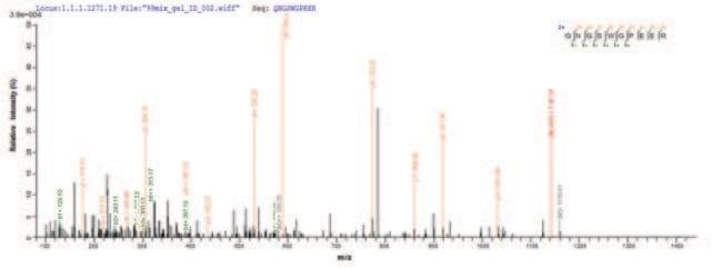 enQuireBio™Recombinant Human Galectin-9 Protein 500μg enQuireBio™Recombinant Human Galectin-9 Protein