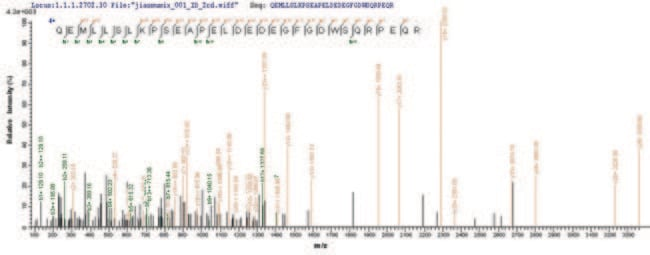 enQuireBio™ Recombinant Human LSP1 Protein 50μg enQuireBio™ Recombinant Human LSP1 Protein