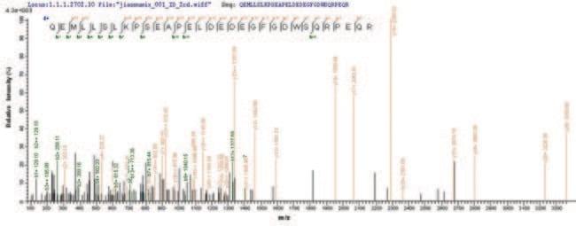 enQuireBio™Recombinant Human LSP1 Protein 10μg enQuireBio™Recombinant Human LSP1 Protein