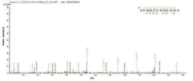 enQuireBio™Recombinant Human TNF receptor-associated factor 6 Protein 200μg enQuireBio™Recombinant Human TNF receptor-associated factor 6 Protein