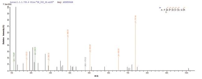 enQuireBio™Recombinant E. coli Hygromycin-B 4-O-kinase Protein 200μg enQuireBio™Recombinant E. coli Hygromycin-B 4-O-kinase Protein