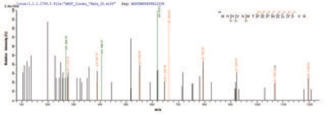 enQuireBio™Recombinant Human IFIH1 Protein 100μg enQuireBio™Recombinant Human IFIH1 Protein