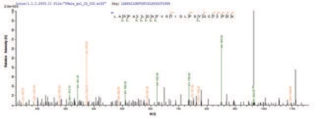 enQuireBio™Recombinant Rat HGF / Hepatocyte Growth Factor Protein 200μg enQuireBio™Recombinant Rat HGF / Hepatocyte Growth Factor Protein