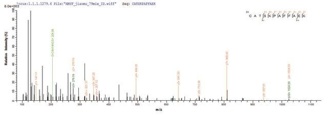 enQuireBio™Recombinant Human Annexin A1 Protein 200μg enQuireBio™Recombinant Human Annexin A1 Protein