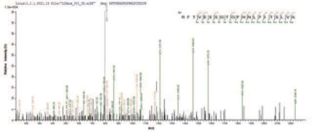 enQuireBio™Recombinant Human Titin Protein 200μg enQuireBio™Recombinant Human Titin Protein