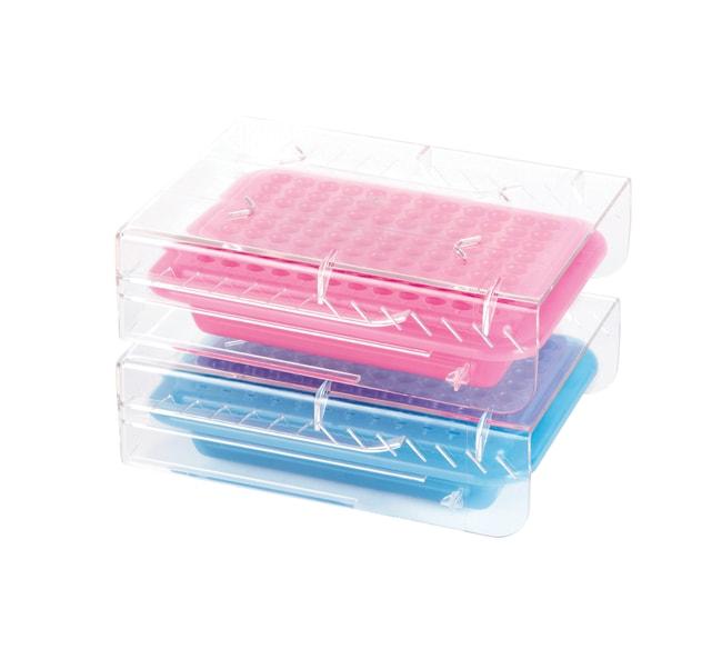 Fisherbrand™Fisherbrand™ PCR™ Cooler, 96 Plätze Produkttyp: Violett und Rosa sowie Dunkelblau und Hellblau Fisherbrand™Fisherbrand™ PCR™ Cooler, 96 Plätze