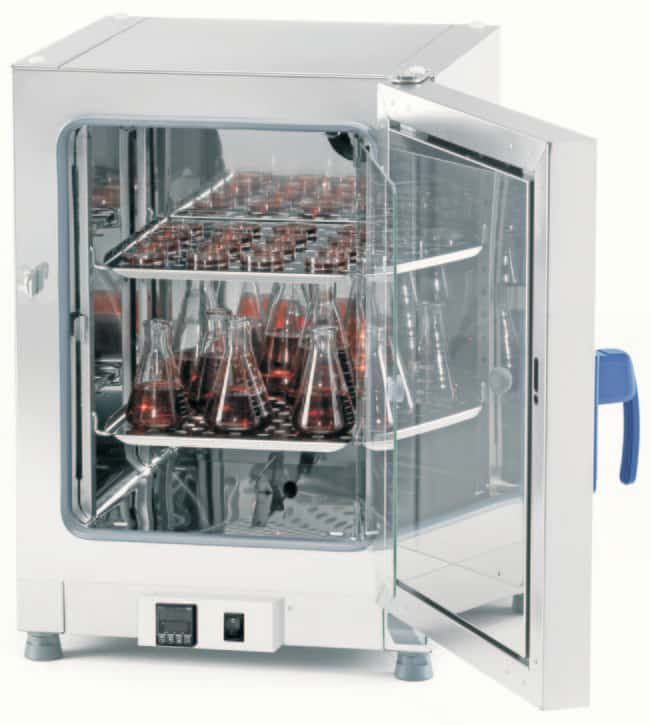 Fisherbrand™ Gravity Convection Microbiological Incubator, 194 L, Stainless Steel Capacity: 194L Standard Incubators