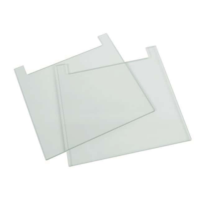 Fisherbrand™ Notched Glass Plates 20 x 20cm; 4mm thick Fisherbrand™ Notched Glass Plates