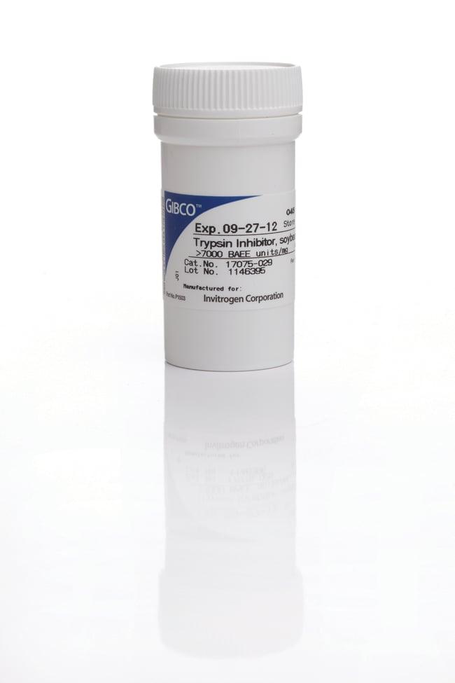 Gibco™ Molecular Probes™ Soybean Trypsin Inhibitor, powder ...