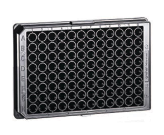 Greiner Bio-One™Microplaca para cultivo celular CellCoat™ de poli-D-lisina de 96 pocillos High Binding, Sterile Ver productos