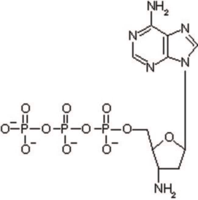 IBA Solutions For Life Science™3'-Amino-2'  Custom Nucleotides